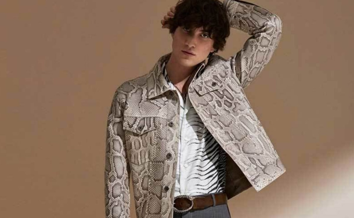 new style 2fedf 6d591 What is happening with Roberto Cavalli?